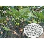 Tinklas augalams apsaugoti 2*5 m 30g/m2 GARDEN LINE